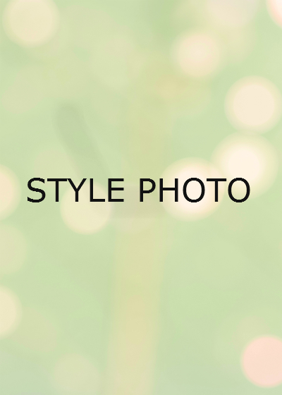 STYLE PHOTO
